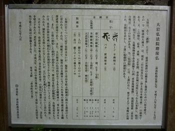 P1000691.JPG